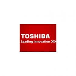 6LE71739000 Fuser Toshiba 163
