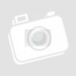 40X0619 Transfer Roller Guide ASM